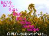 megumi_144