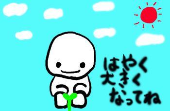 kimome3.jpg
